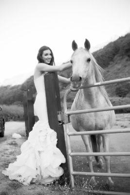 Telluride elopement photographers